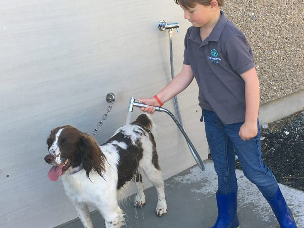 Dog Friendly at Polmanter Touring Park St Ives