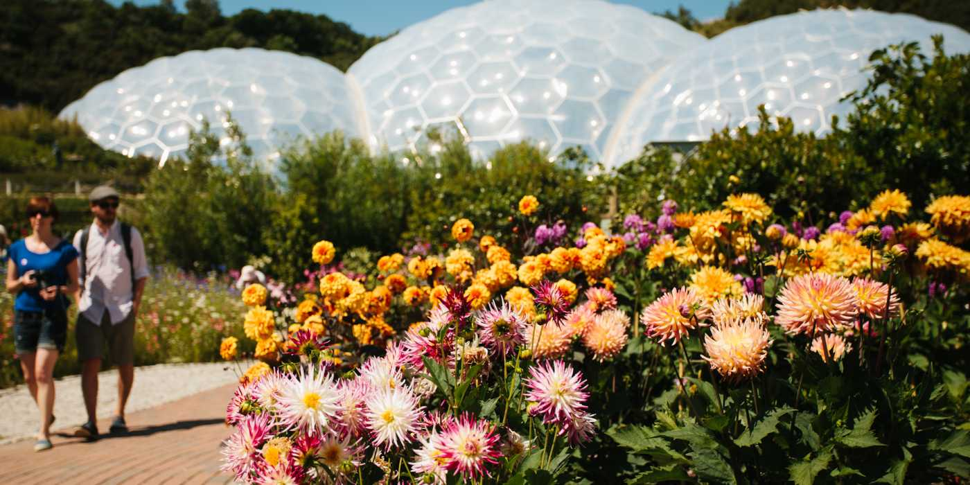 Couple walking next to brightly coloured flowers with the Eden biomes in the background